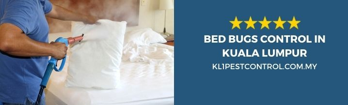 Bed Bugs Control KL