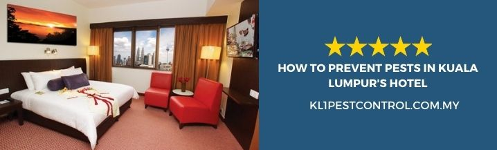 How to Prevent Pests in Kuala Lumpur Hotel