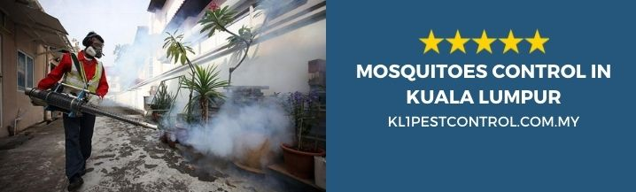 Mosquitoes Control KL