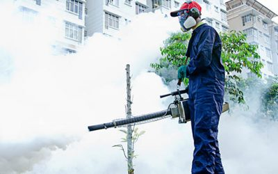 Reasons Why Commercial Buildings Need Pest Control