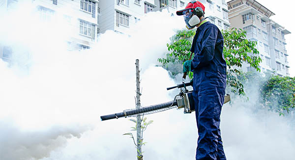 Why Commercial Buildings Need Pest Control